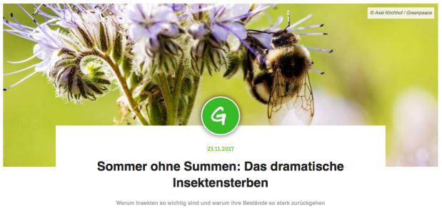 Sommer ohne Summen - Artikel
