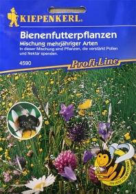 Bienenfutterpflanzen