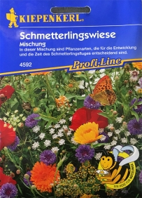 Schmetterlingswiese