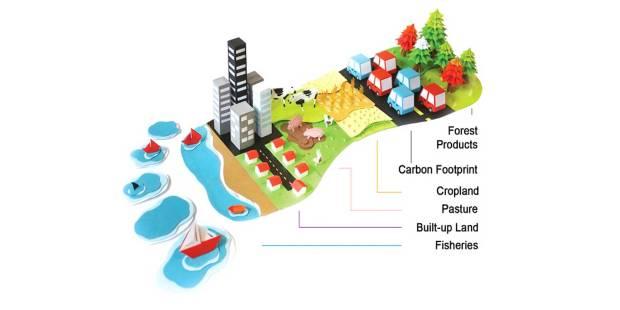 Bestandteile ökologischer Fußabdruck